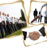 Подбор специалистов и руководителей фото