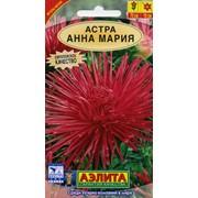 Семена цветов Астра Анна Мария фото