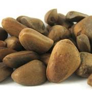 Переработка кедровых орехов фото