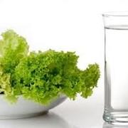Курсы обучения сбалансированному питанию фото