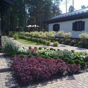 Ландшафтный дизайн, озеленение, благоустройство территорий фото