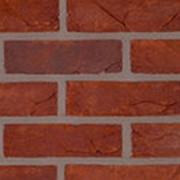 Кирпич керамический Terca PORTSMOUTH ECO WFD65 полнотелый лицевой 215х65х65 фото