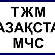 Логотип на рукав (2 цвета, 6 см) фото