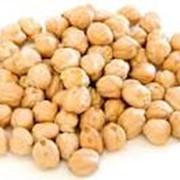 Семена нута, Нут, Нут купить в Казахстане фото