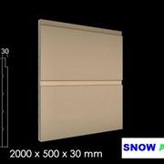 Фасадные облицовочные панели фото