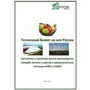 Готовое исследование: Состояние и прогнозы развития производства овощей, зелени и цветов в промышленных теплицах ЮФО и СК ФО-2012 фото
