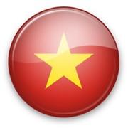 Письменный перевод текстов с/на вьетнамский язык фото
