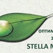Информационно-волновая терапия Центр оптимального здоровья STELLA MEDICA фото