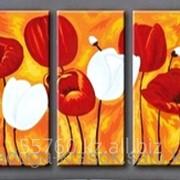 Картина по номерам Красные и белые тюльпаны фото
