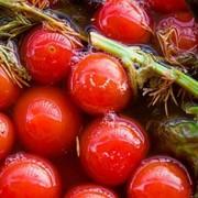 Квашенный помидор в бочках от производителя фото
