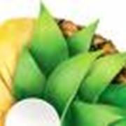 Консервы пюреобразные фруктовые фото