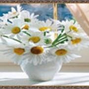 Гобеленовая картина 75х145 GS346 фото