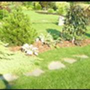 Проектирование ланшафтного сада фото