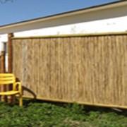 Забор и ограда фото