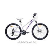 Велосипед горный Rosy 1.0 D фото