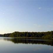 База отдыха Белое озеро фото