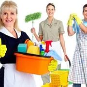 Клининговые услуги для офисов и квартир. фото