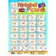 Alphabet Pictures. Англійський алфавіт в малюнках. 52 таблиці, 340-490 мм. Будна Т. Б. фото