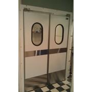 Жесткие маятниковые распашные двери фото