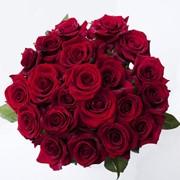 Свежие красные розы от компании Bestflowers фото
