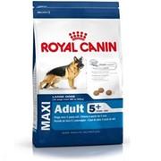 Maxi Adult 5+ Royal Canin корм для взрослых собак, 5+, Пакет, 15,0кг фото