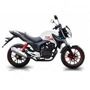 Мотоцикл FLASH 200 фото