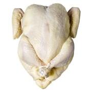 Тушка курицы фото