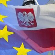 Бизнес виза в Польшу фото