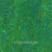 Линолеум натуральный фото