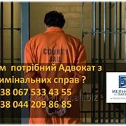 Адвокат в кримінальних справах фото