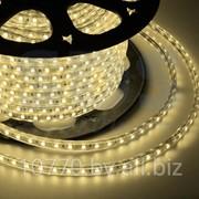 LED лента Neon-Night, герметичная в силиконовой оболочке, 220V, 10*7 мм, IP65, SMD 3528, 60 диодов/метр, цвет светодиодов теплый белый, бухта 100 фото