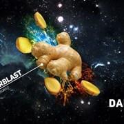 Darkside GINGERBLAST 100гр. для кальяна (Дарксайд  фото