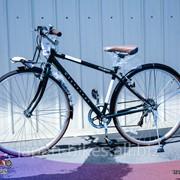 Велосипед Ntcb700 фото