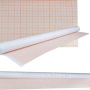 Миллиметровка 878мм x 20м в рулоне ( Бумага масштабно-координатная ) фото