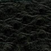 Кожа страуса фото