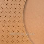 Экокожа Coventry Bentley/Perforated 046 фото