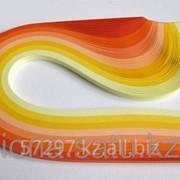 Бумага набор №35 120гр., 300мм., 200 полос, 8 цветов цитрусовый фото