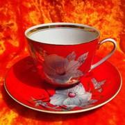 Набор чайный (барановский фарфор) эксклюзив 80-х годов фото