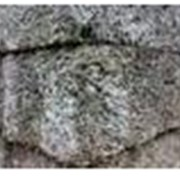 Дерево-бетон фото