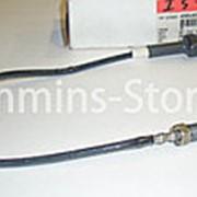 4954574 Датчик температуры Камминз / Sensor, Temperature Cummins фото
