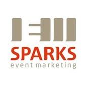 SPARKS - это не агентство по организации мероприятий и может это наш минус, мы ВАШ ПЕРСОНАЛНЬНЫЙ МЕНЕДЖЕР по всем организационным вопросам, мероприятий класса - THE BEST фото