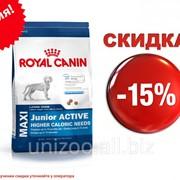Сухой корм для щенков Royal Canin Maxi Junior Active (Роял Канин Макси Джуниор Ектив) 4 кг фото