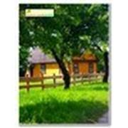 Сеть агроусадеб в Беловежской пуще фото