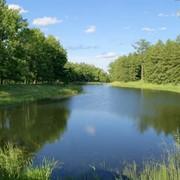 Элитный пруд фото