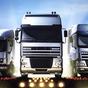 Доставка грузов в прямом и обратном направлениях по России и Белоруссии фото