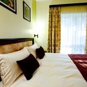 Бронирование отелей номеров в еко отеле Шишкинн фото